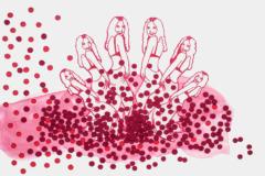 garego Artprints|Motiv|0203|Kategorie|Zeichnung