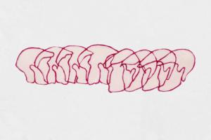 garego Artprints-Kunst für Alle!|Motiv|0001|Kategorie|Zeichnung