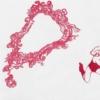 garego Artprints-Kunst für Alle!|Motiv|0013|Kategorie|Zeichnung